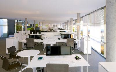 Ein eigenes Unternehmen gründen: GmbH oder Einzelfirma?
